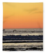 Pelican Sunset Fleece Blanket