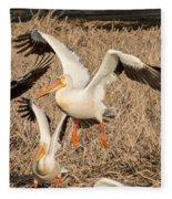 Pelican Takeoff Fleece Blanket