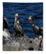 Pelicanos Fleece Blanket