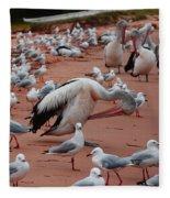 Pelicans At Pearl Beach 3.0 Fleece Blanket
