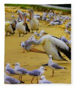 Pelicans At Pearl Beach 3.1 Fleece Blanket
