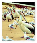 Pelicans At Pearl Beach 4.1 Fleece Blanket