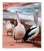 Pelicans At Pearl Beach 5.2 Fleece Blanket