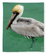 Pelican's Cove Fleece Blanket