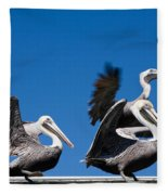 Pelicans Take Flight Fleece Blanket