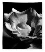 Penetrating The Rose Fleece Blanket
