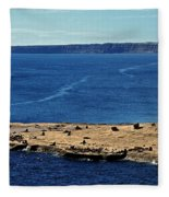 Peninsula De Valdez Fleece Blanket