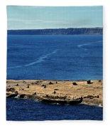 Peninsula De Valdez Fleece Blanket