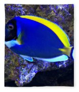 Blue Tang Fish  Fleece Blanket