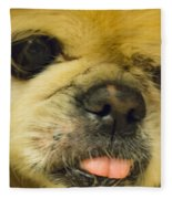 Pensive Pup Fleece Blanket