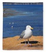 Pensive Seagull Fleece Blanket