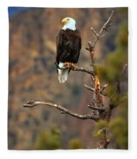 Perched At Smith Rock Fleece Blanket