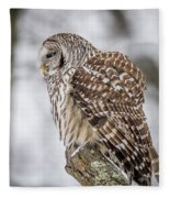 Perched Barred Owl Fleece Blanket