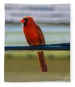 Perched Cardinal Fleece Blanket