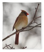 Perched Female Red Cardinal Fleece Blanket