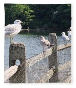 Perched Gulls Fleece Blanket
