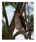 Perched Hawk Fleece Blanket