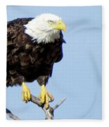Perched On A Tree Fleece Blanket