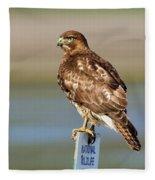 Perched Red Tail Hawk Fleece Blanket