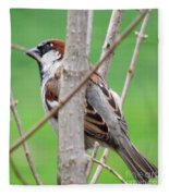 Perching Sparrow Fleece Blanket