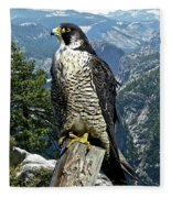 Peregrine Falcon, Yosemite Valley, Western Sierra Nevada Mountain, Echo Ridge Fleece Blanket