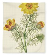 Perennial Adonis Fleece Blanket