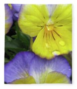 Perfectly Pansy 11 Fleece Blanket