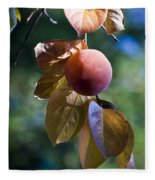 Persimmon Tree Fleece Blanket
