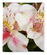 Peruvian Lilies  Flowers White And Pink Color Print Fleece Blanket
