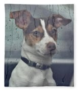 Pet Looking Out Car Window On Rainy Day Fleece Blanket