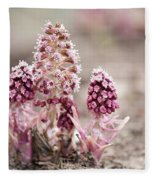 Petasites Hybridus Pink Flowers Fleece Blanket