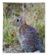 Peter Cottontail Fleece Blanket