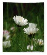 Petite Daisies 3 Fleece Blanket
