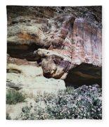 Petra, Transjordan: Cave Fleece Blanket