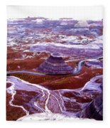 Petrified Forest Fleece Blanket