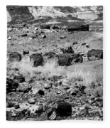 Petrified Forest National Park #2 Fleece Blanket