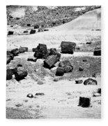 Petrified Forest National Park #3 Fleece Blanket