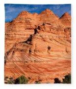 Petrified Sand Dunes Fleece Blanket