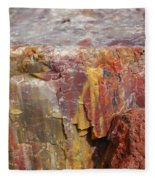 Petrified Wood 2 Fleece Blanket