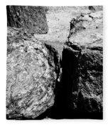 Petrified Wood Fleece Blanket