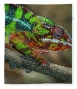 Ambilobe Panther Chameleon Fleece Blanket