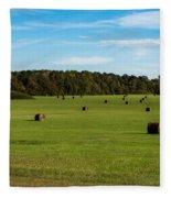 Pharr Mounds - Natchez Trace Fleece Blanket
