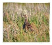Pheasant Hen Fleece Blanket
