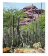 Phoenix Botanical Garden Fleece Blanket