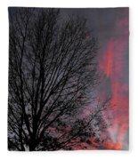 Phoenix Cloud Rising Fleece Blanket
