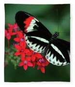 Piano Key Butterfly Fleece Blanket