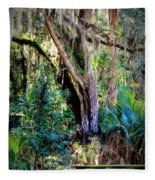 Picnic Time In Florida Fleece Blanket