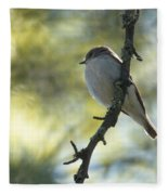 Pied Flycatcher 1 Fleece Blanket