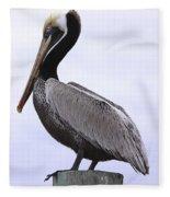 Pier Pelican Ponce Inlet Fleece Blanket