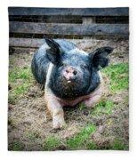 Pig Out Fleece Blanket